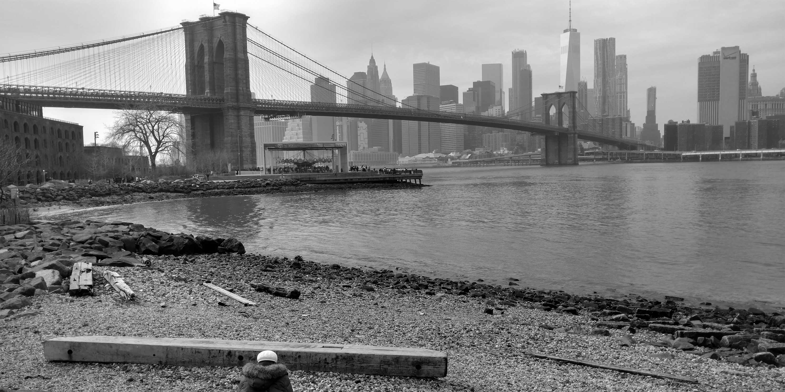 Brooklyn Bridge and Jane's Carouse below it