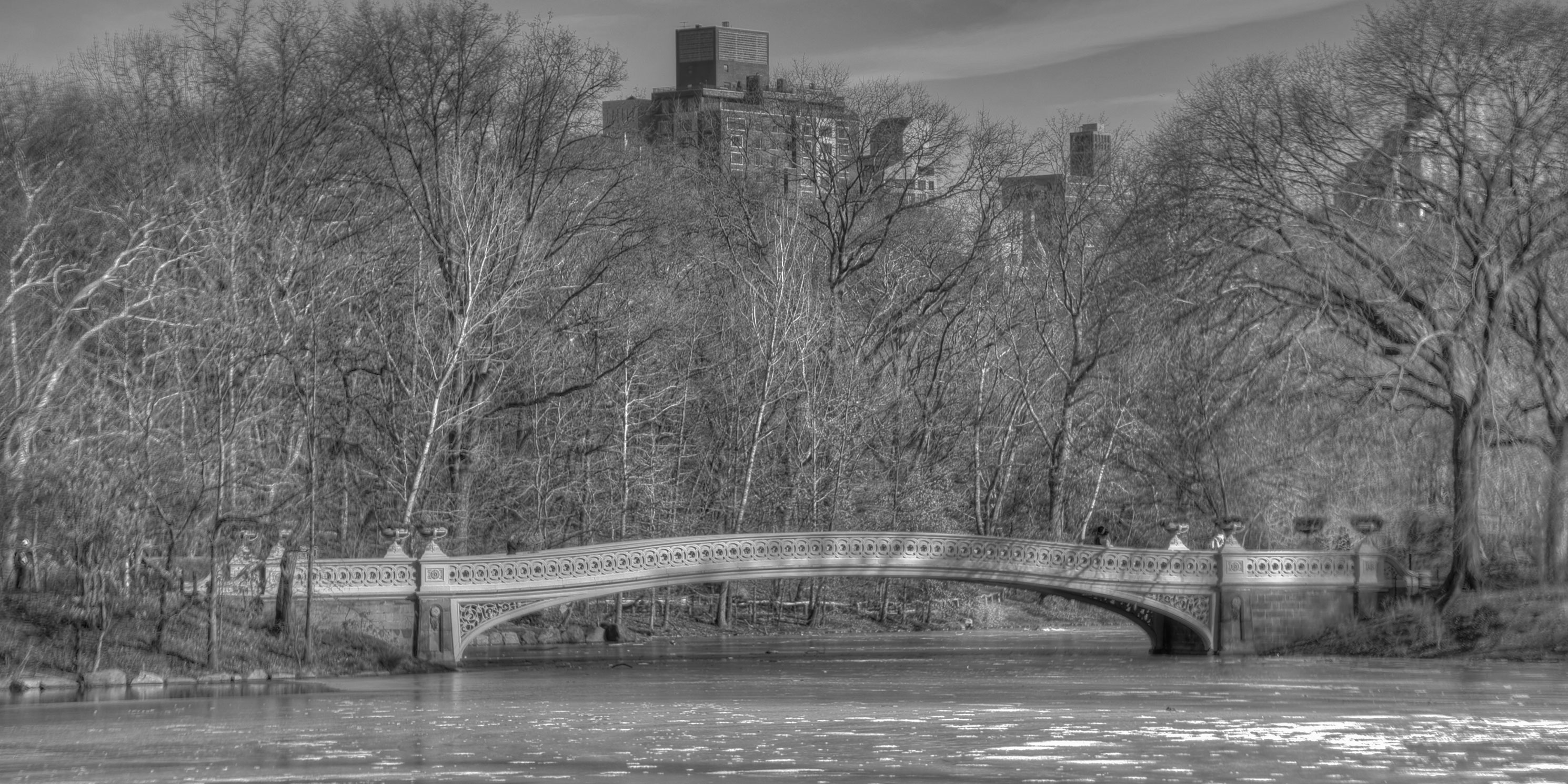 Bow Bridge in Central Park during winter