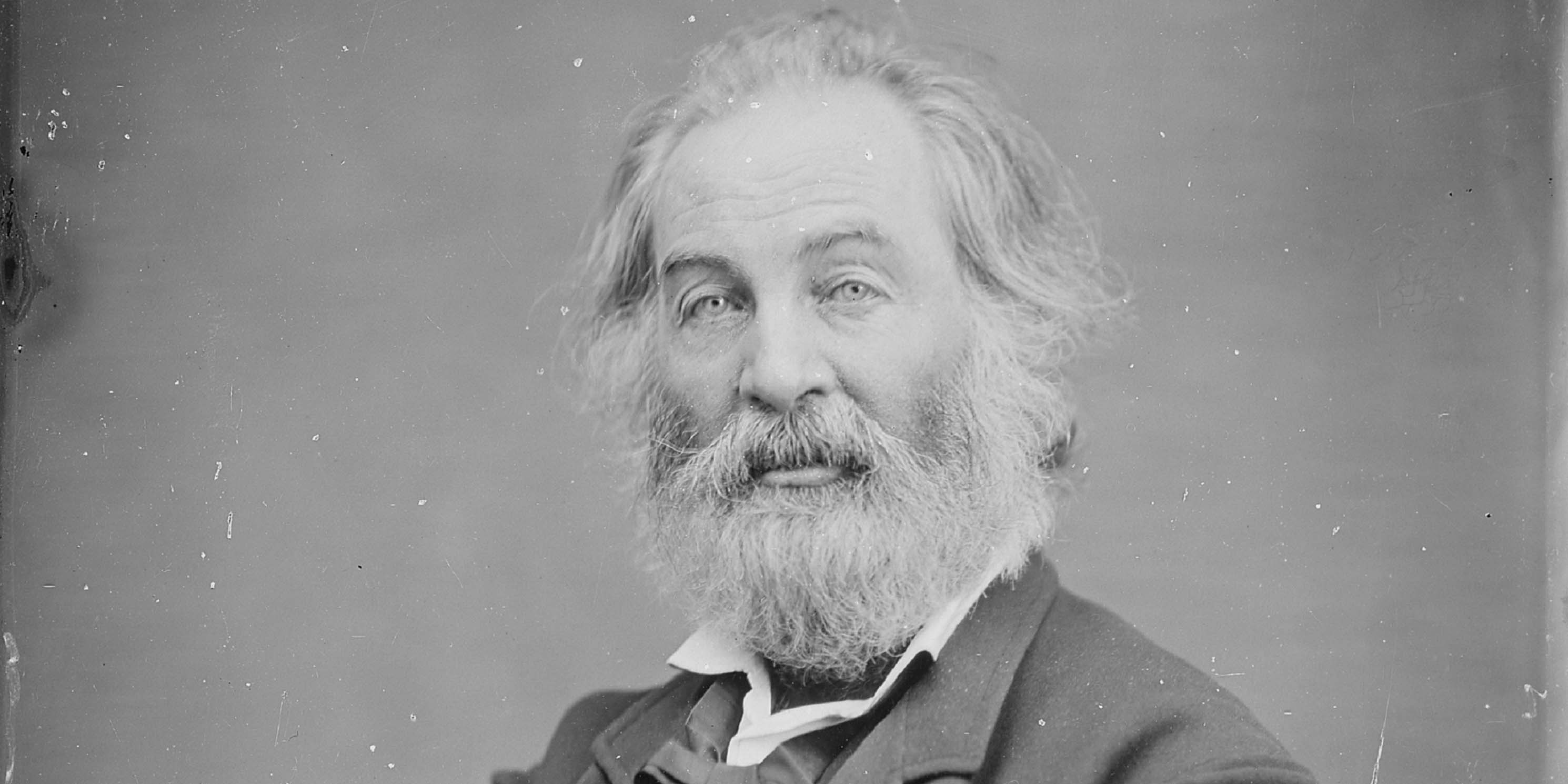 Portrait of Walt Whitman by Matthew Brady