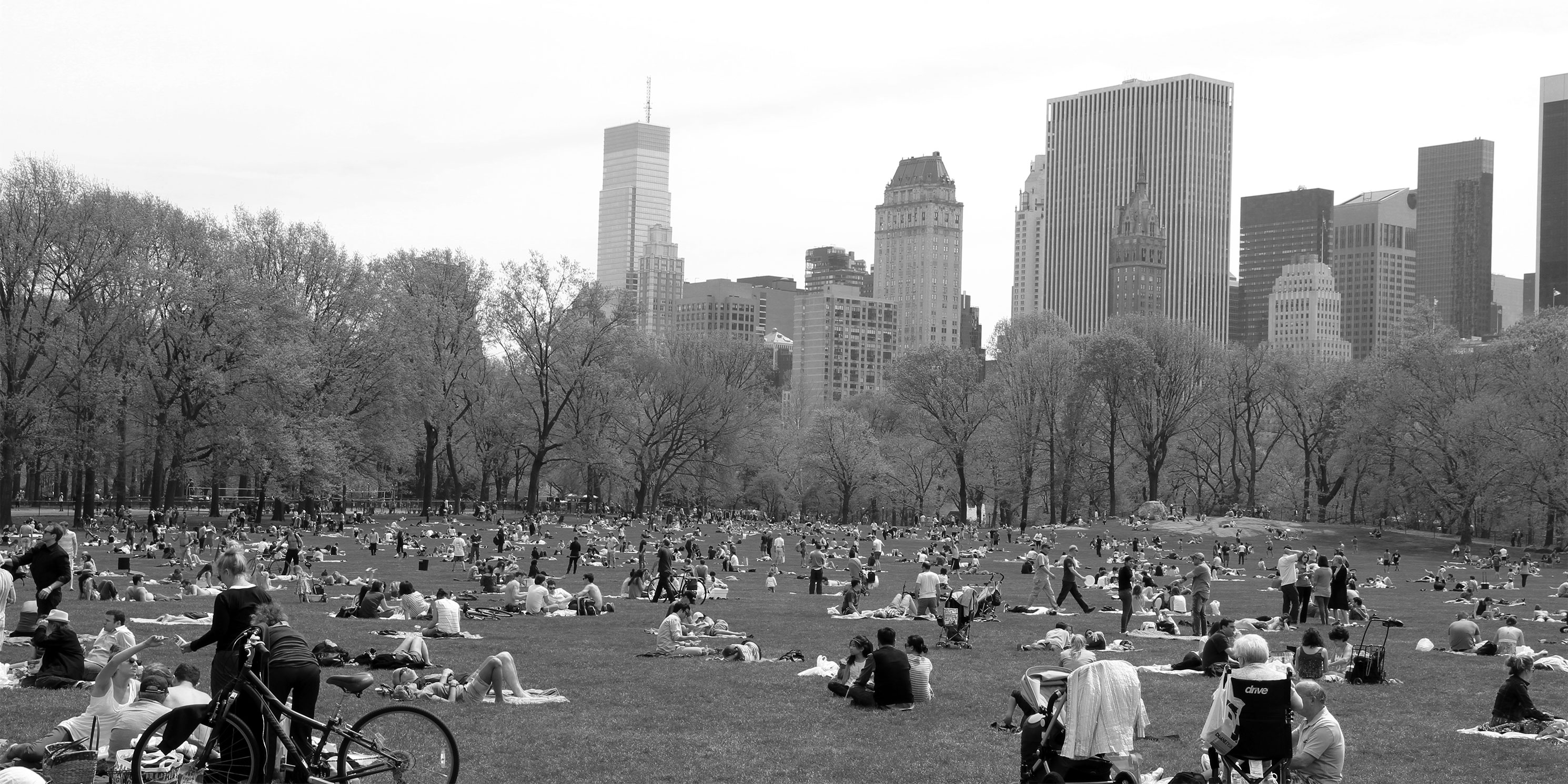 Sheep Meadow in Central Park in warm weather