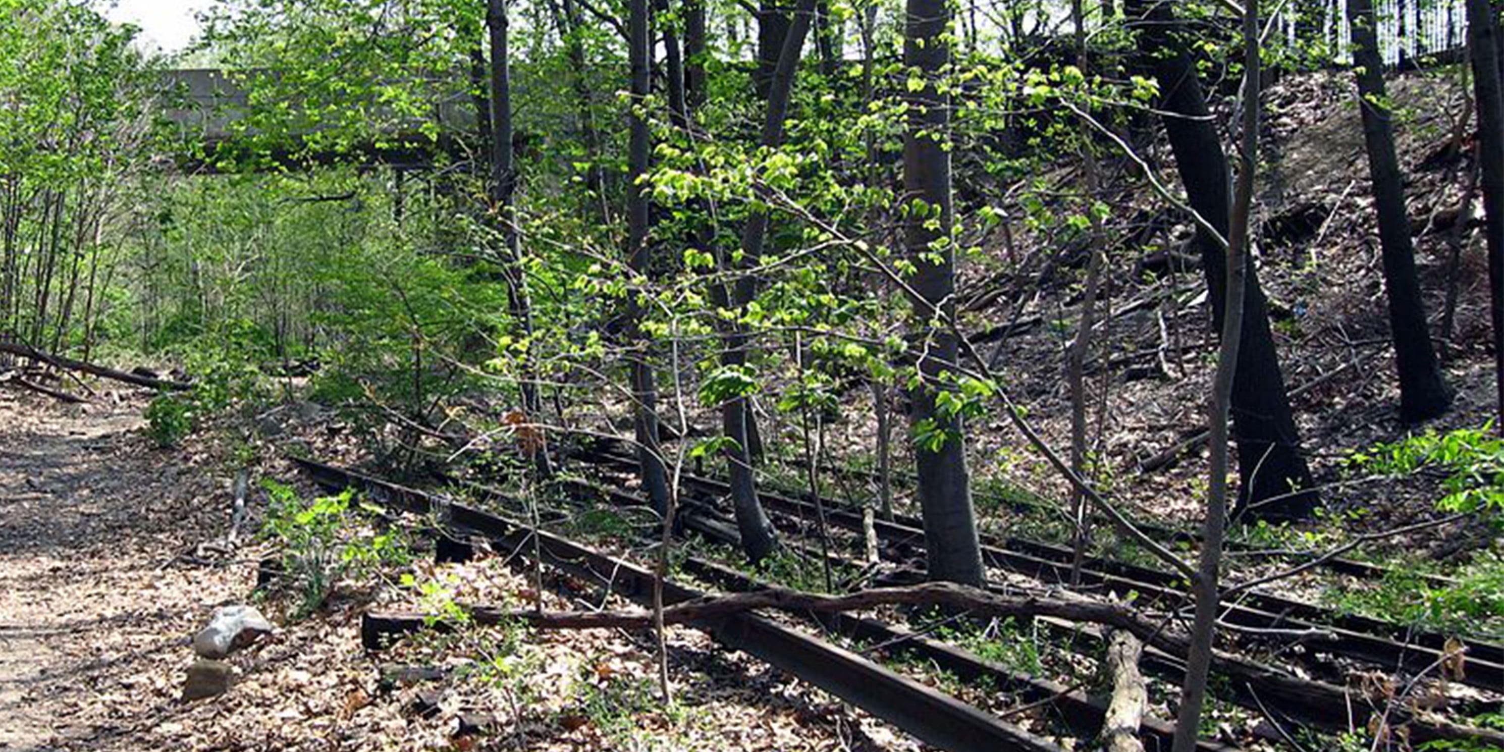 abandoned railroad tracks from the Long Island Railroad's Rockaway Beach Branch