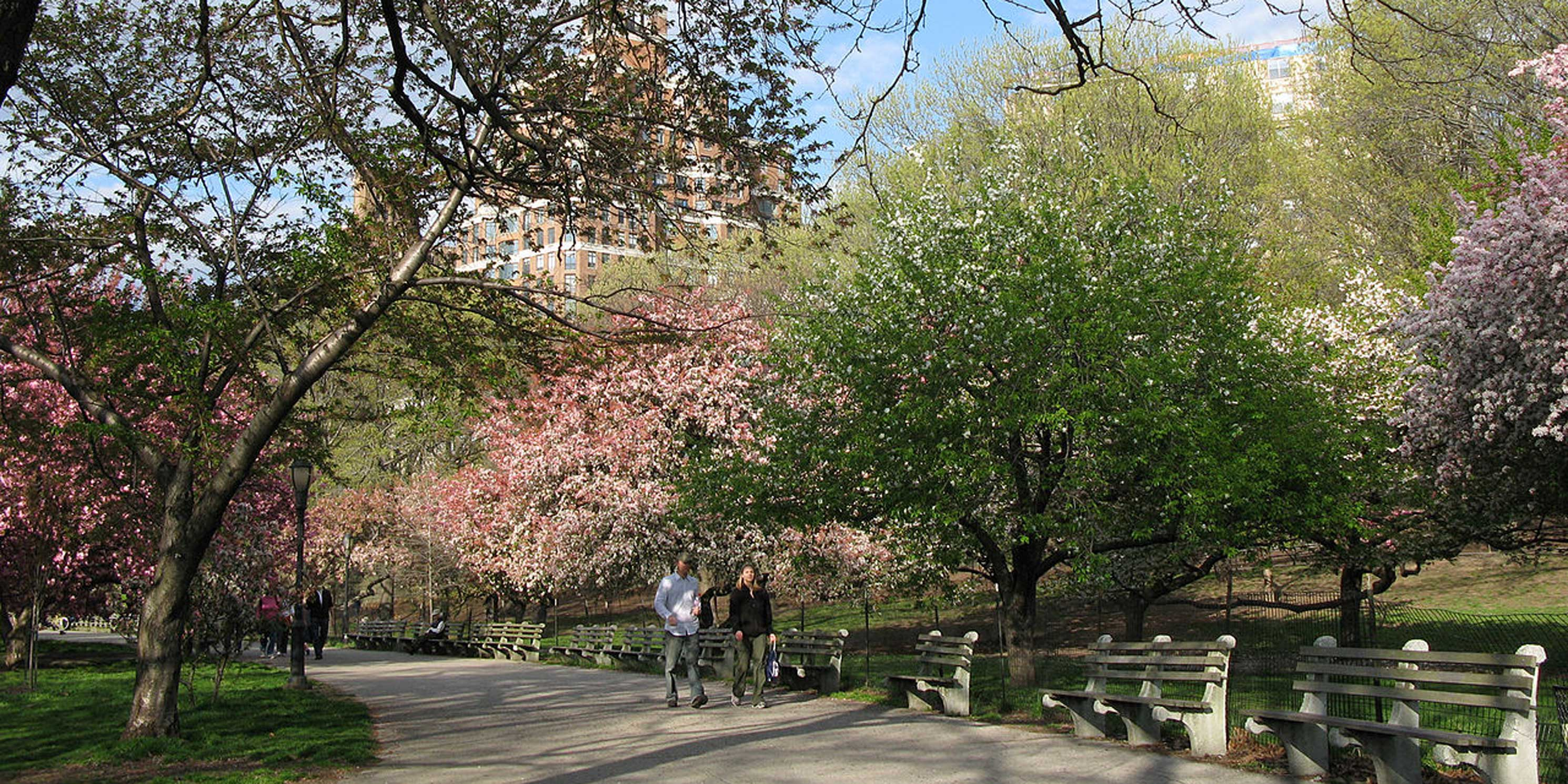 Riverside Park, New York City