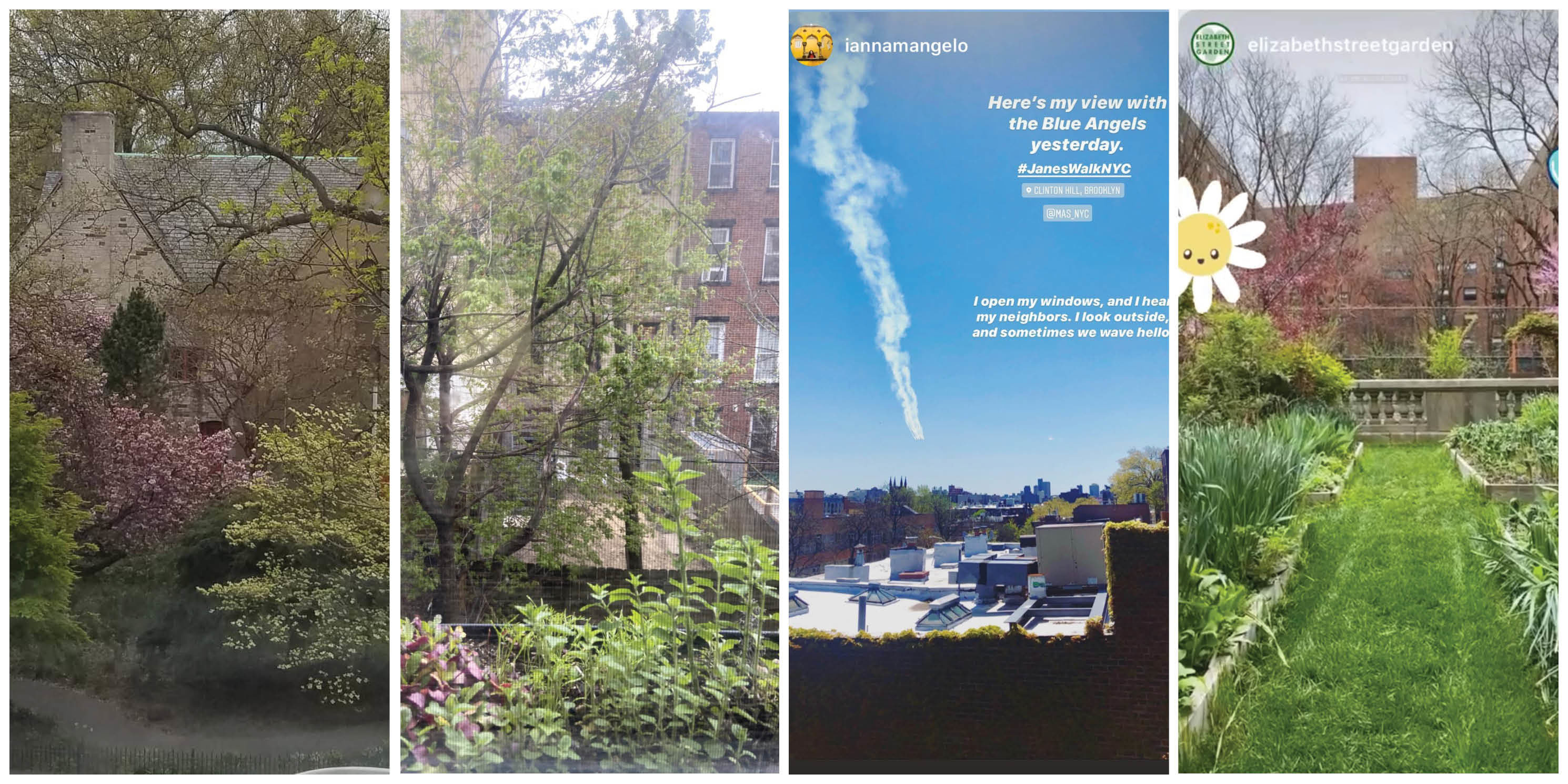 collage of view from people's windows