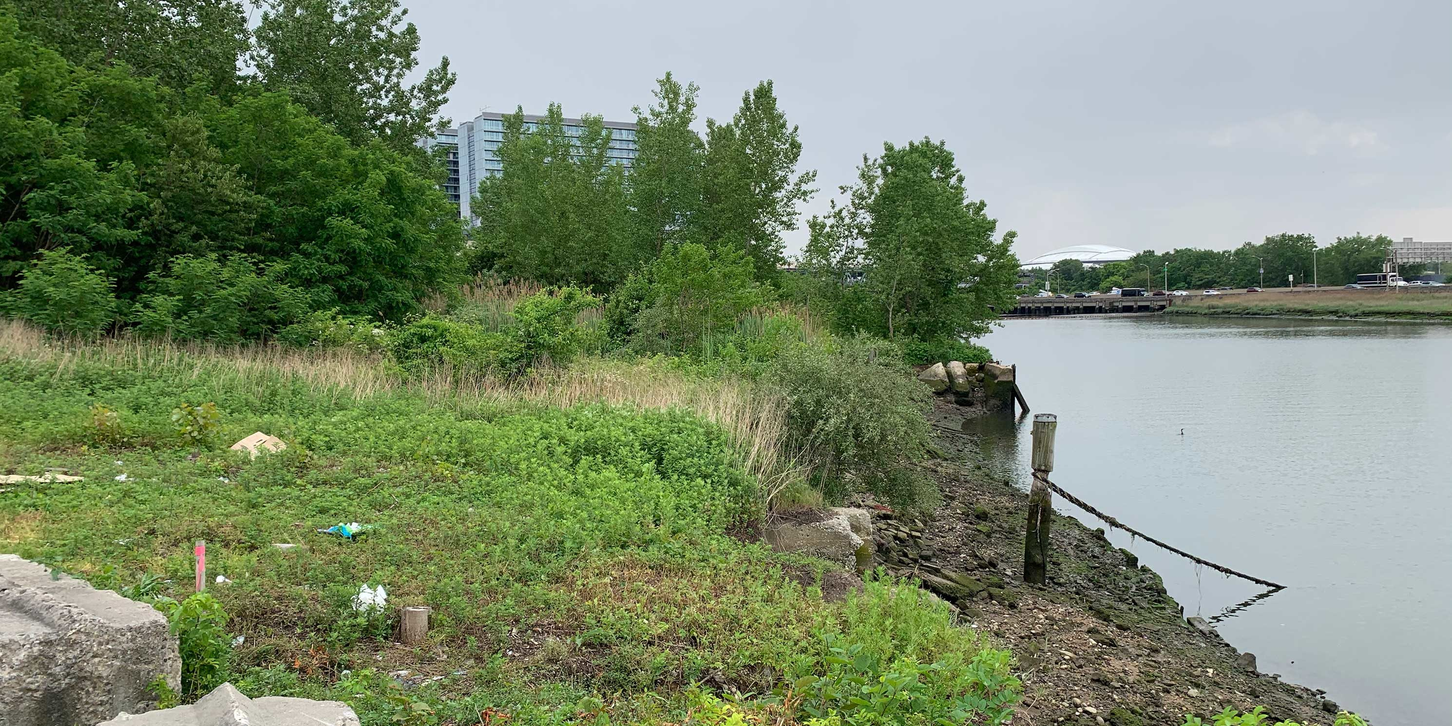 dilapidated and overgrown Flushing Creek shoreline in Flushing, Queens